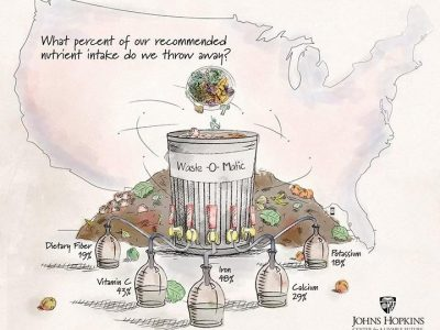 Wasted nutrients: The result of widespread food waste
